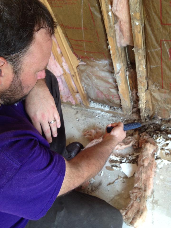 adam-willard-ashleys-building-termite-damage-repair-shreveport-louisiana